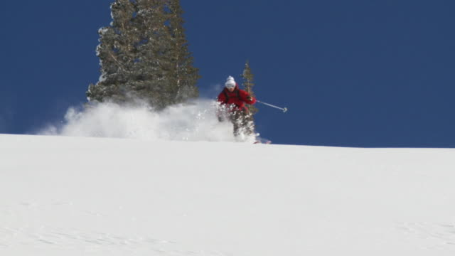 stockvideo's en b-roll-footage met ws tu td slo mo skier skiing in powdery snow / alta, snowbird, utah, usa - alta utah