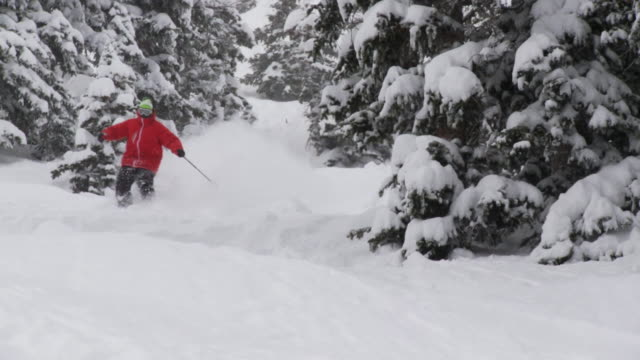 WS PAN ZI ZO SLO MO Skier skiing in powdery snow / Alta, Snowbird, Utah, USA