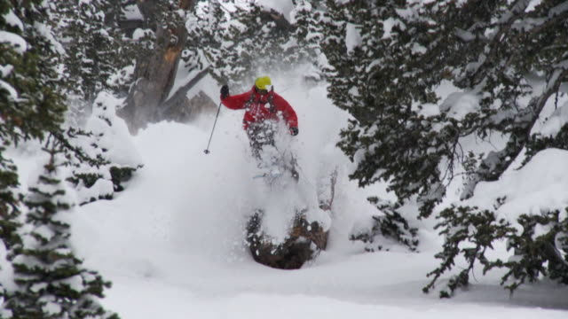 WS TD ZO SLO MO Skier skiing in powdery snow / Alta, Snowbird, Utah, USA