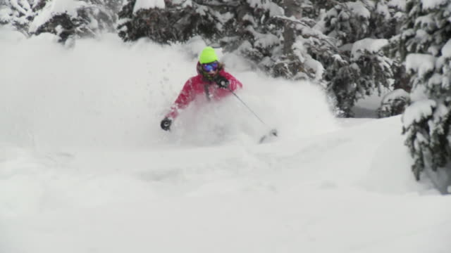 stockvideo's en b-roll-footage met ws pan zo slo mo skier skiing in powdery snow / alta, snowbird, utah, usa - alta utah
