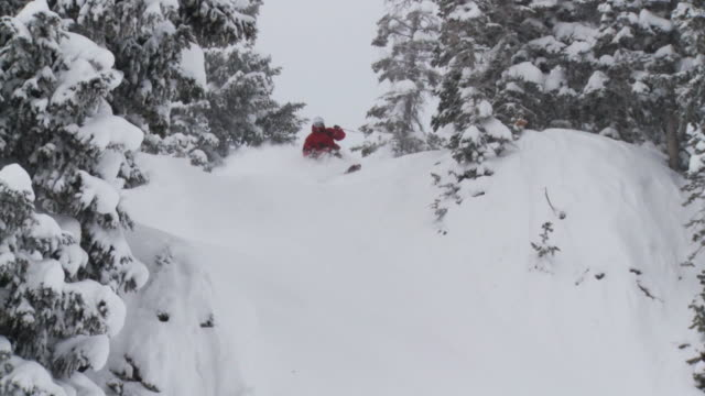ws td slo mo skier skiing in powdery snow / alta, snowbird, utah, usa - ユタ州 アルタ点の映像素材/bロール