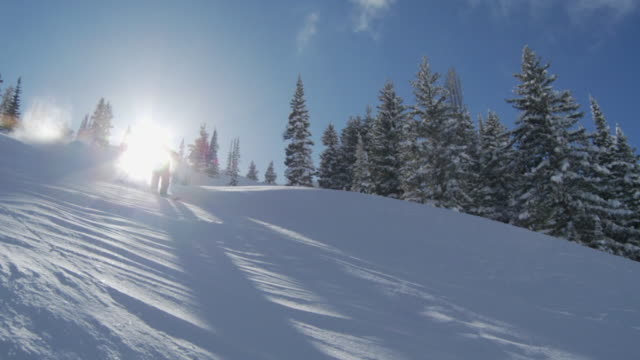 ws slo mo skier skiing in powdery snow, sun shining in background / alta, snowbird, utah, usa - ユタ州 アルタ点の映像素材/bロール