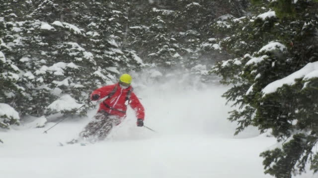 ws zo pan slo mo skier skiing in powdery snow, turning and splashing snow / alta, snowbird, utah, usa  - ユタ州 アルタ点の映像素材/bロール