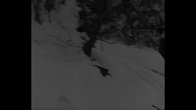 up skier tightens boot lace takes off down slope / ms skier takes off downhill on slalom course / vs skiers slaloming downhill weaving in and out of... - sichtbarer atem stock-videos und b-roll-filmmaterial