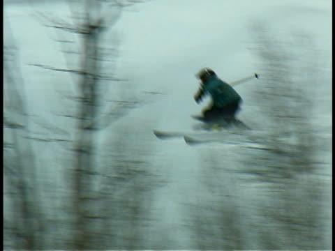 vídeos de stock e filmes b-roll de skier - bastão de esqui