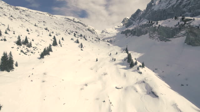 Skiers and Trees at the refuge du Bostan in the french alps