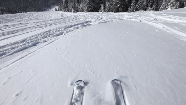 hd: skiing and falling in snow on carving skis - ski stock videos & royalty-free footage