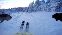 FPV: Skiing through freshly snowed forest in beautiful mountain ski resort