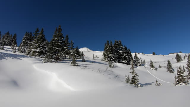skiing - rocky mountains stock-videos und b-roll-filmmaterial