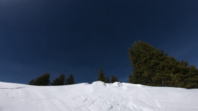 skiing - freestyle skiing stock videos & royalty-free footage