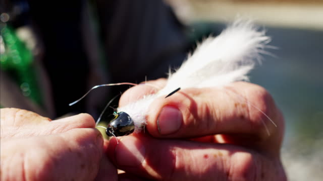 Skilled fisherman freshwater fishing preparing hand tied fly