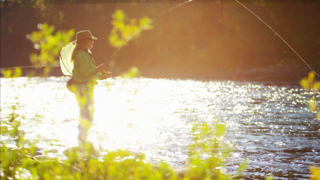 skilled hobby female casting line freshwater fishing canada - freshwater fish stock videos & royalty-free footage