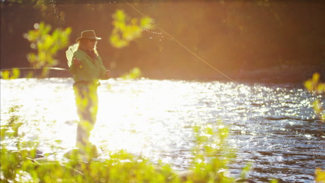 skilled hobby female casting line freshwater fishing usa - freshwater fish stock videos & royalty-free footage
