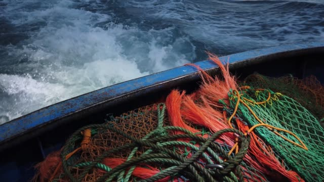 vidéos et rushes de skipper stuart hamilton, pulls in the nets while fishing for flatfish such as skate and dover sole in the english channel from a hastings fishing... - bras de mer mer