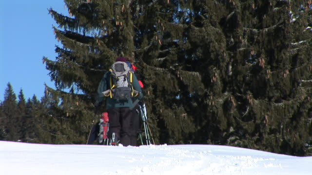 hd: ski-touring - telemark stock videos and b-roll footage