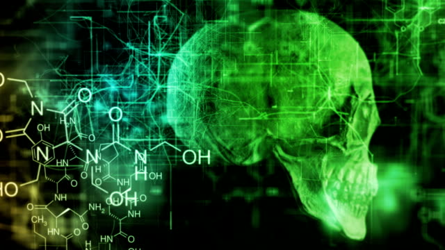 skull chemical - cerebellum stock videos & royalty-free footage
