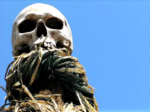 skull - ceremony stock videos & royalty-free footage