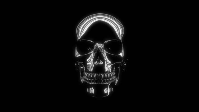 skull - skull stock videos and b-roll footage