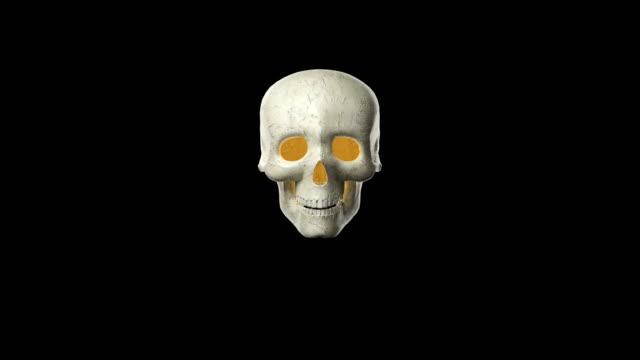vídeos y material grabado en eventos de stock de cráneo para halloween - hueso