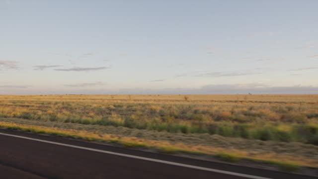 sky and brownish grassy plain - baumgruppe stock-videos und b-roll-filmmaterial