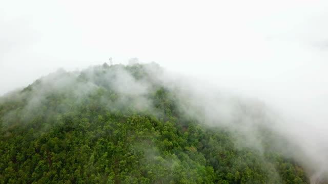 vídeos y material grabado en eventos de stock de cielo y niebla en la montaña en tailandia - punta descripción física