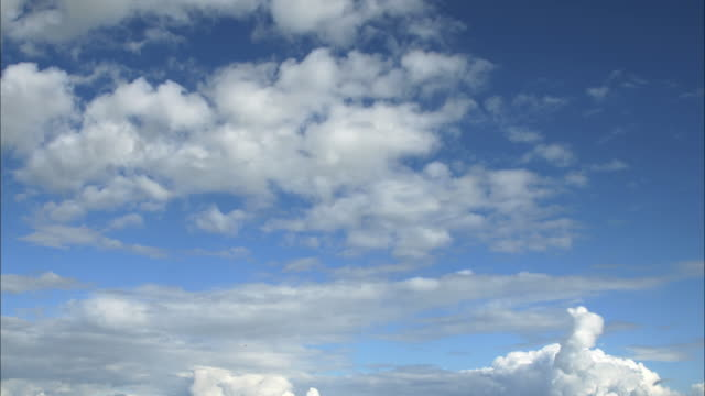 sky cloud  rice paddy - horizont über land stock-videos und b-roll-filmmaterial