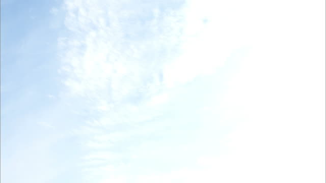sky  onneto marsh  autumn leaves - 湿地点の映像素材/bロール