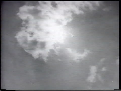 sky sun behind clouds ws seagull bird w/ wings spread slightly flying note black spots flecks questionable condition - spread wings stock videos & royalty-free footage
