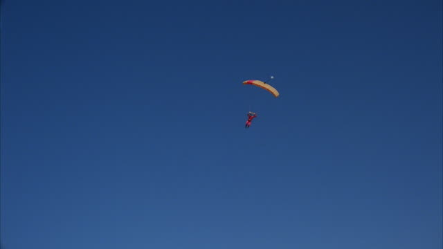 A skydiver swoops past the camera.