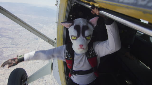 skydiving grumpy cat - airplane exit - parachute opening - 奇妙点の映像素材/bロール