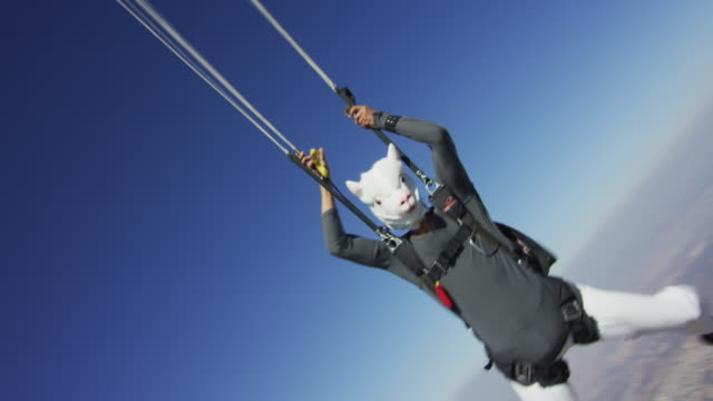skydiving in lama mask - parachute opening - skydiving stock videos & royalty-free footage