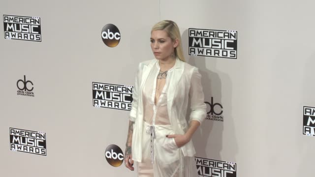 skylar grey at 2016 american music awards at microsoft theater on november 20 2016 in los angeles california - american music awards stock videos and b-roll footage