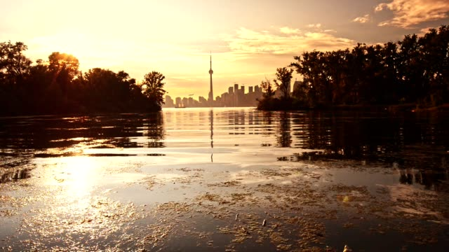 skyline of toronto at dusk - waterfront stock videos & royalty-free footage