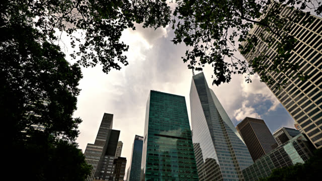 skyline. rising up / looking up at the financial buildings through tree leafs. concept. modern and nature - bryant park stock videos & royalty-free footage
