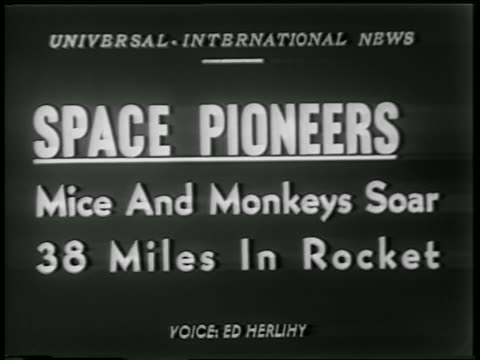 vidéos et rushes de b/w 1952 slate space pioneers mice and monkeys soar 38 miles in rocket / newsreel - 1952