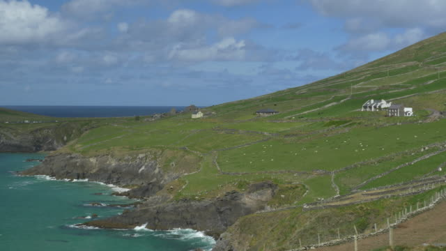 WS PAN L Slea Head Drive, Dingle Peninsula, rugged shoreline, Irish countryside, sheep in green pastures, clouds