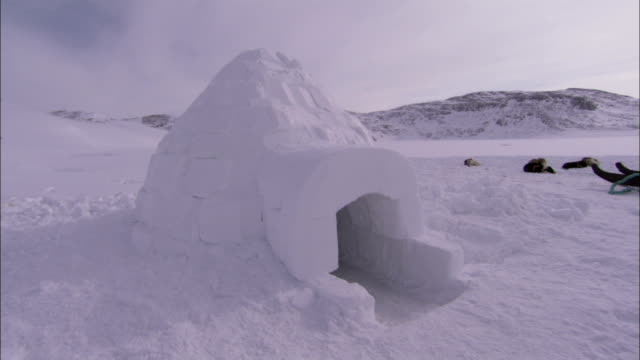 sled dogs lie next to an igloo. available in hd. - igloo stock videos & royalty-free footage