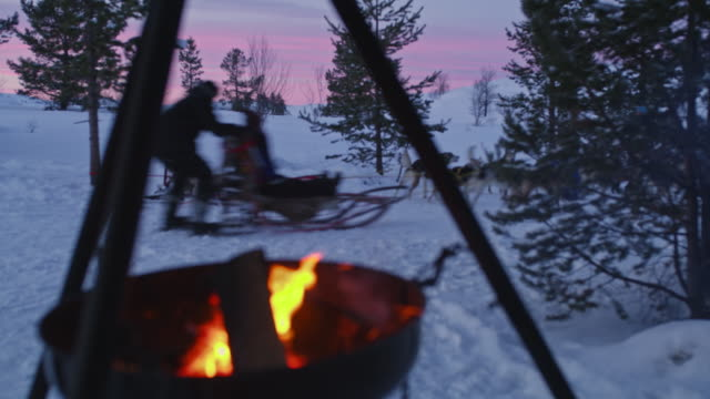 DS R/F Sled dogs passing by a campfire