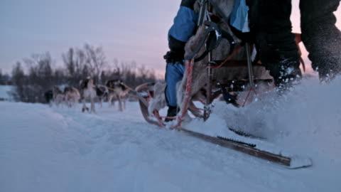 vidéos et rushes de chiens de traîneau de slo mo course à travers la neige à l'aube - chien de traîneau