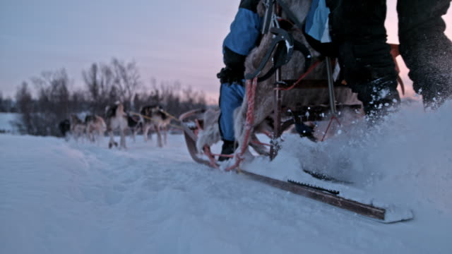 SLO MO Sled dogs racing across the snow at dawn