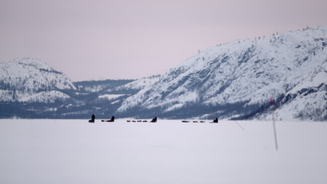 SLO MO Sled dogs racing through the snow