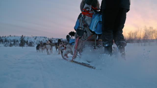 SLO MO Sled dogs running across the snow at sunrise