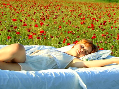 schlafen in mohn-bett - liegen stock-videos und b-roll-filmmaterial