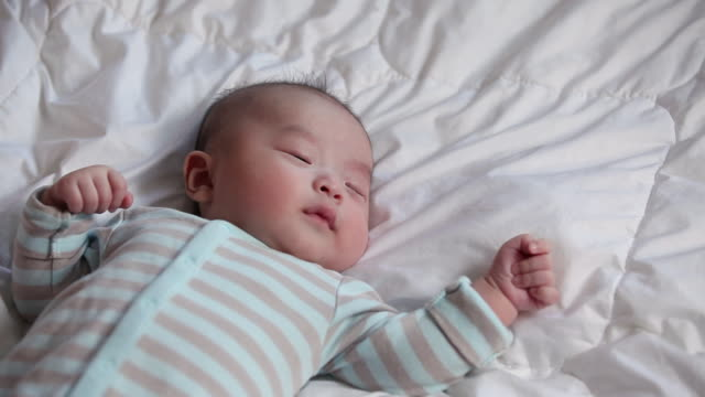 ms sleeping newborn baby / jeju-do, south korea - babies only stock videos & royalty-free footage