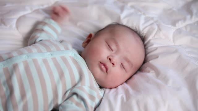 ms sleeping newborn baby / jeju-do, south korea - babies only stock videos & royalty-free footage