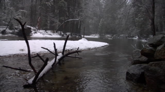 WS Sleet falling on snow-covered log in river in Yosemite National Park / California, USA