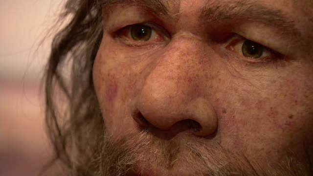 Slice of rock found in Jersey could be earliest work of art discovered on British soil ENGLAND London Close shot model of prehistoric man