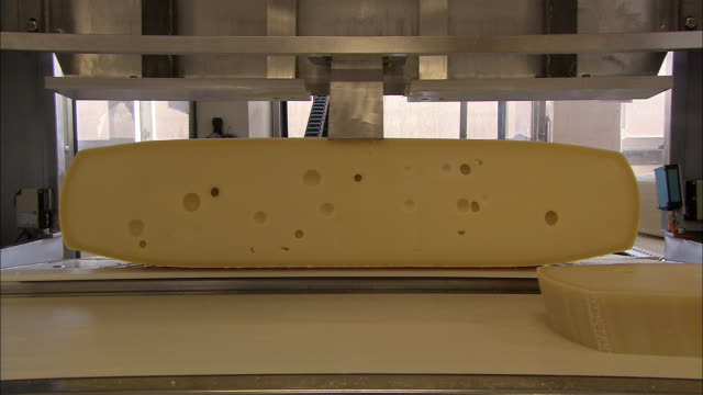 Sliced Swiss cheese falls onto a conveyor at a food-processing plant in Bern, Switzerland.