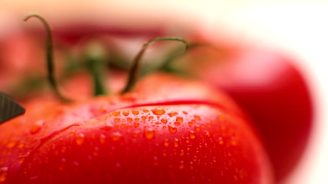 slicing tomato - chopping stock videos & royalty-free footage