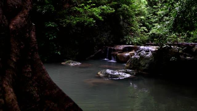 vídeos de stock e filmes b-roll de slide dolly waterfall in jungle with beautiful emerald green water. - árvore tropical